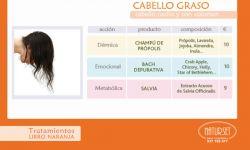 CABELLO GRASO - Tratamiento