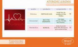ATEROSCLEROSIS - Tratamiento