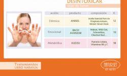 DESINTOXICAR - Tratamiento