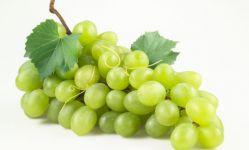 Aceite de Pepita de Uva para una piel tersa y sin arrugas