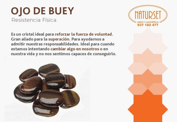 Ojo de Buey - Minerales de Naturset
