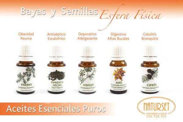 Familia Bayas y semillas - Aceites Esenciales Puros de Naturset