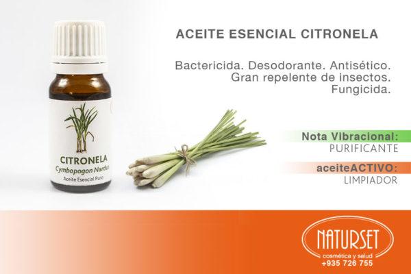 Aceite Esencial Citronela - Aceites Esenciales PUROS de Naturset