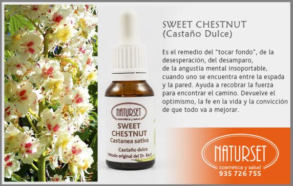 Sweet Chestnut - Flores de Bach de #Naturset
