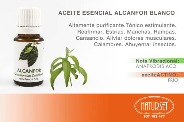Alcanfor Blanco - Aceites Esenciales Puros de Naturset