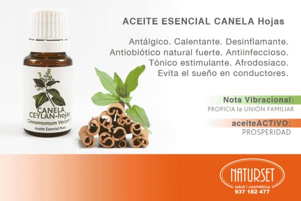 Canela - Hojas - Aceite Esencial PURO de NATURSET