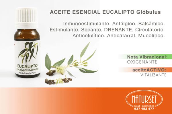 Eucalipto Glóbulus - Aceites Esenciales Puros de Naturset
