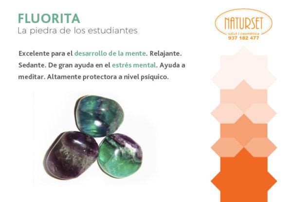 Fluorita - Piedra de los estudiantes - Cristales y Piedras de Naturset