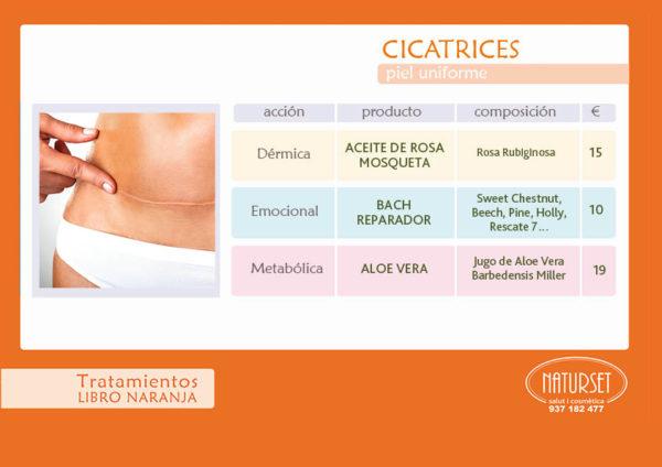 Cicatrices - Tratamiento - Libro Naranja de NATURSET