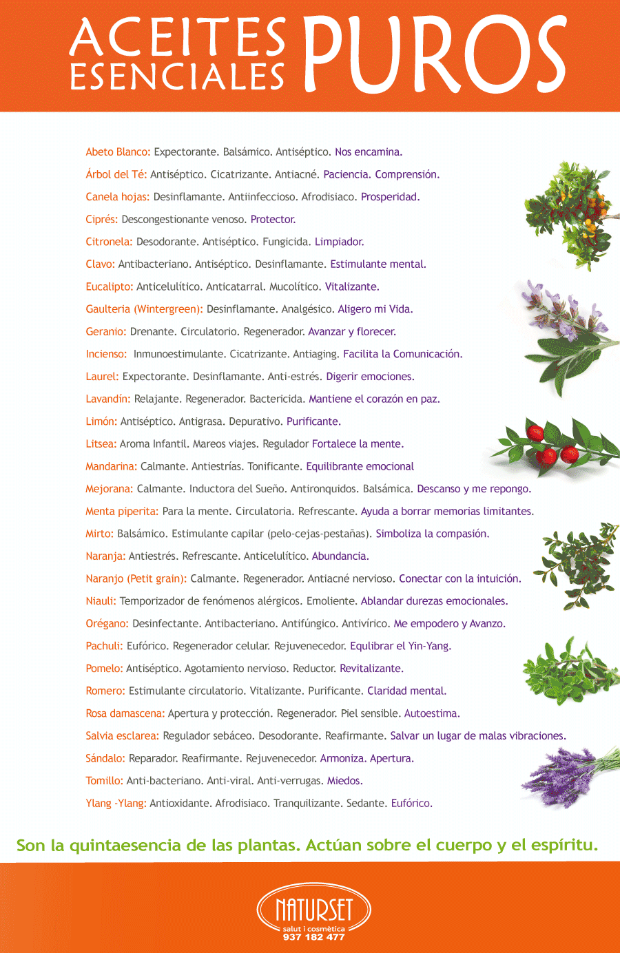 Aceites Esenciales Puros en NATURSET